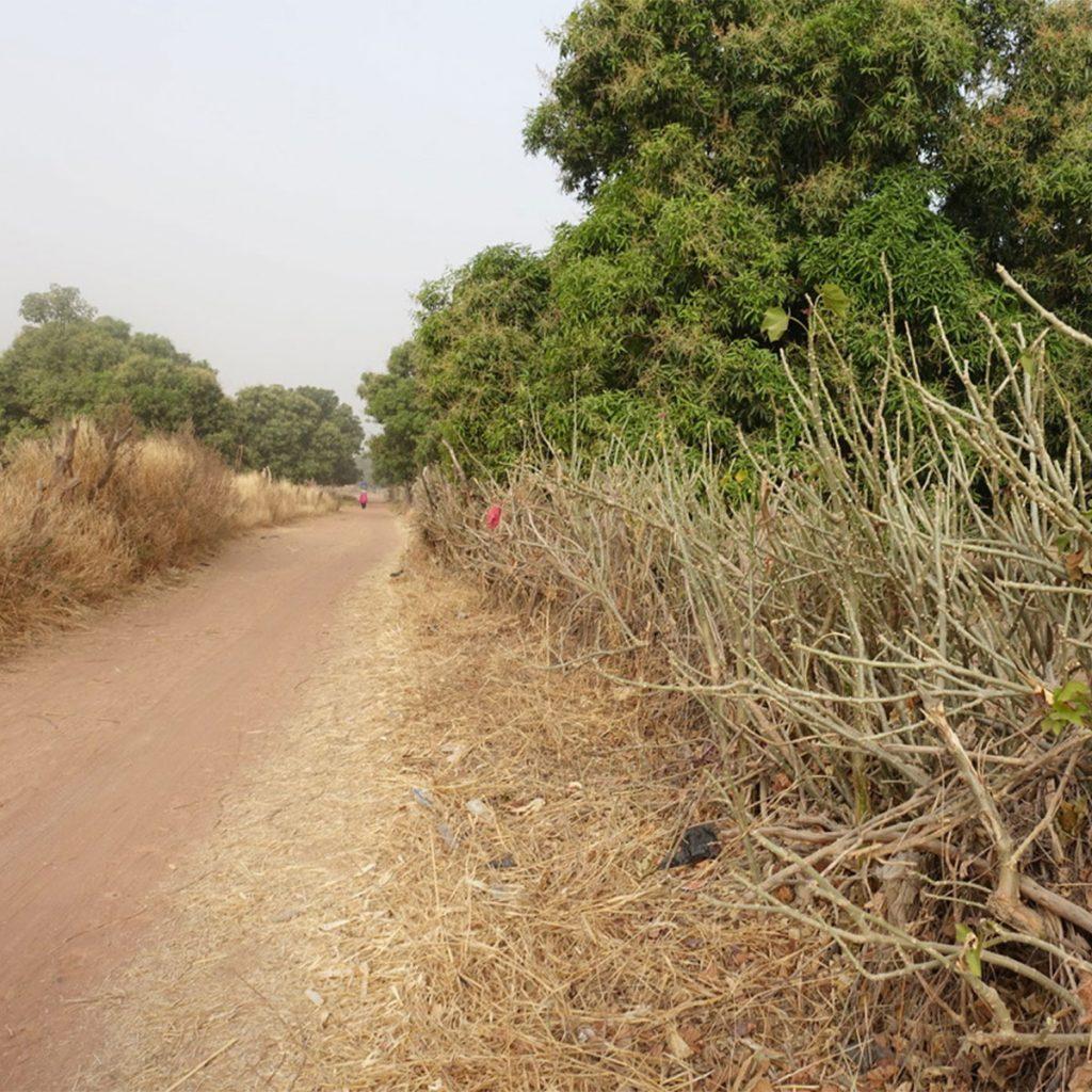 Das ländliche Umfeld